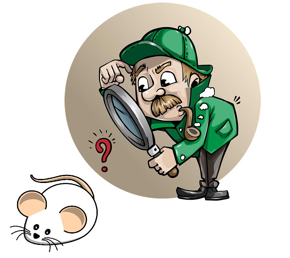 Löydä oikeanlainen hiiri